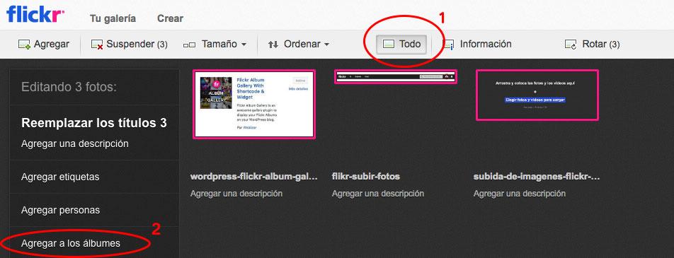 como crear album fotos Flickr para WordPress